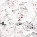 rose_decay_lite_main_image_2