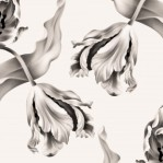 tulipswallpaperwarmwhite-1