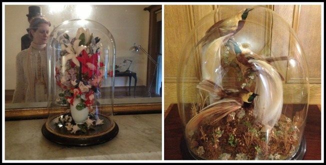 the bell jars